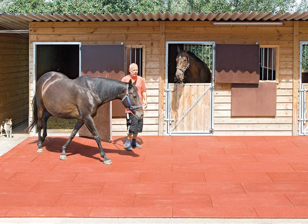 talna obloga za bokse konjev